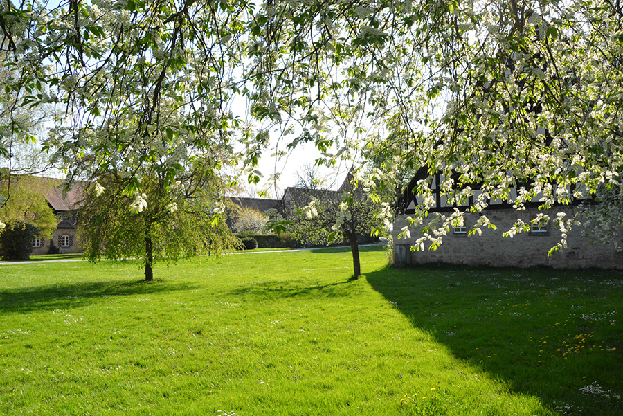 Frühling im Schlosshof Sommersdorf